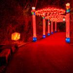 Lantern Park
