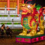 Festival Dragon Display