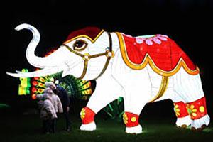 Elephant Silk Creation