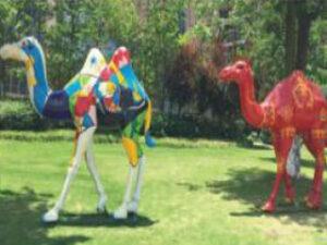 Fiberglass Exterior Double Camel Set