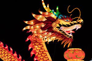 Silk Dragon Art