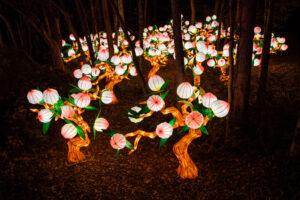 Silk Peach Tree Forest