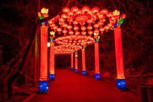 Traditional Hanging Red Lanterns