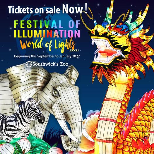Festival Illumination