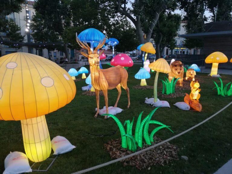 Lantern Arts Exhibition - Reindeer