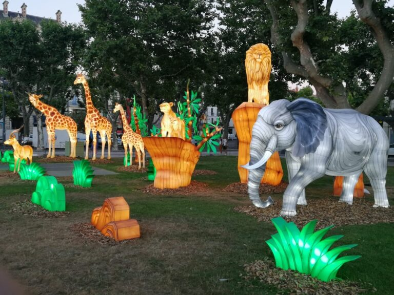 Lantern Arts Exhibition - Animals