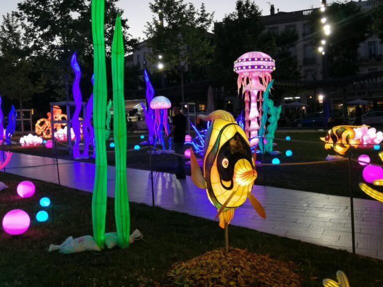 Lantern Arts Exhibition - Fish